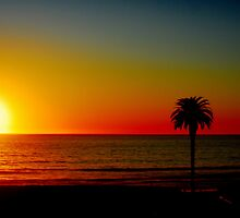 Pacific Sunset by DanTheBugleMan