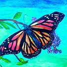 Monarch Butterfly by Alexandra Felgate