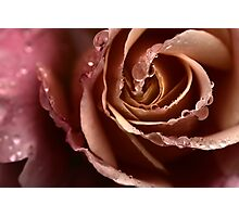 For Charmian Photographic Print