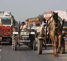 On The Road 1, Rajasthan, India by RIYAZ POCKETWALA