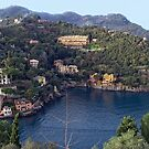 Portofino, Italy by Tutelarix
