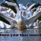 I love you this much! by Bonnie T.  Barry