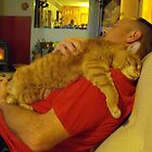Frank and Les...Blissful Napping!! by Tracy Faught