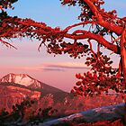 SUNSET,CRATER LAKE  by Chuck Wickham