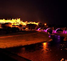 Carcassonne, La Cite and Bridge by Pat Herlihy