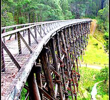 Noojee Trestle Bridge by mrsnatetah