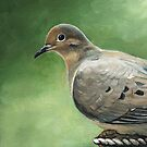 Mourning Dove by Charlotte Yealey