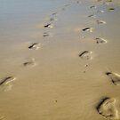 Footprints by Phillip M. Burrow