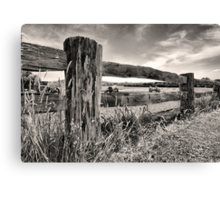 Countryfied Canvas Print