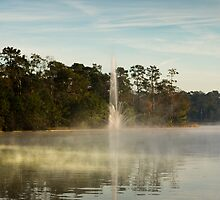 Winter Morning at Lake Woodlands, The Woodlands TX USA by GJKImages