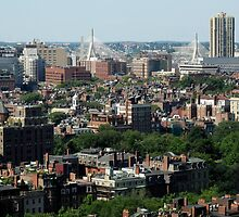 Boston View; Summer Green by PhotoPeep