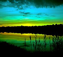 Green Dusk by Paul Gitto