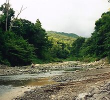 Riverbed in the Mountains, Puerto Rico by SylviaS