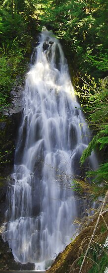 Cascading Waterfall  by Tori Snow