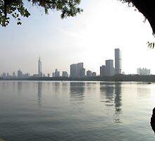 Xuanwu, Nanjing skyline, Jiangsu, China by DaveLambert