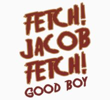 Fetch Jacob Fetch Werewolf Twilight by gleekgirl