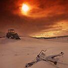 Iceland - working on the farm by Patrycja Makowska