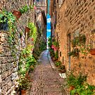 Alley Spello by oreundici