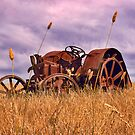 Rusty Tractor by Ian English