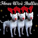 Three Wise Bullies by Louise Morris