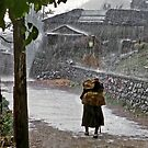 Northern Greece-Plikati  caught in a downpour by milton ginos