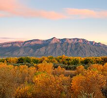 The Sandias and the Rio Grande Bosque II by TheBlindHog
