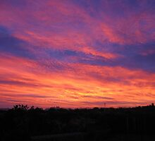 Sunrise, Las Cruces, New Mexico by CynLynn