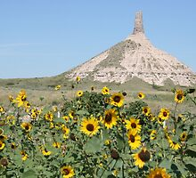 Chimney Rock and Sunflowers by Allen Gaydos