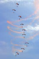 Parachutes  by John Thurgood