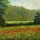 poppies field by edisandu