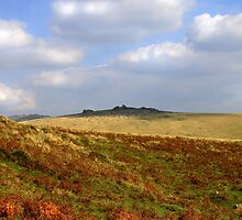 Tor on Dartmoor, Devon by Karen Adams