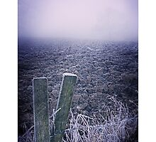 Settled time - Homer, nr Much Wenlock by rharris-images