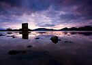Scotland : Castle Stalker by Angie Latham