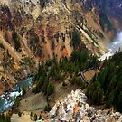 The Gorge - Yellowstone by Vivek Bakshi