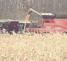 The Harvest by angelandspot