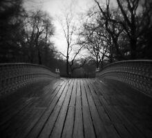 pinebank by Justin Waldinger