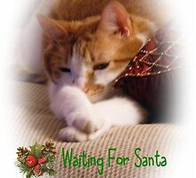 Waiting For Santa by Marie Sharp