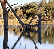 The Cross Barmera, South Australia by Robyn Jolly