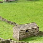 Barns in the Dales by Phil Parkin