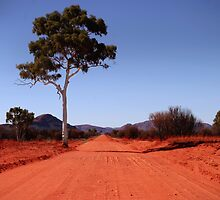 Outback Road by markosixty6