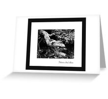 September - Ansel Adams Greeting Card