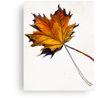 Fall Leaf (Yellow) Canvas Print