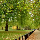 St James's Park, Autumn by Themis