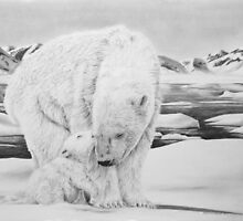 Bear Kiss - Polar Bears by Heather Ward