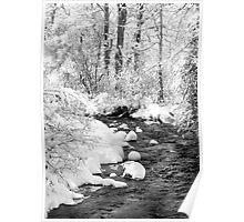 Gallatin Valley Creek Poster