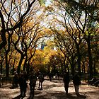 Central Park Fall 02 by chianing