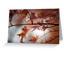Fall Focal Point - Bronze Greeting Card