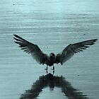 Tern by Louise Linossi Telfer