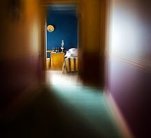 Sleep walk by Adrian Donoghue