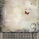butterflies by john finnegan-allen